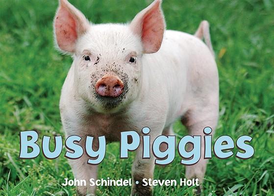 Busy Piggies By Schindel, John/ Holt, Steven (PHT)